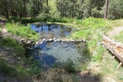 mccauley-hot-spring